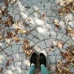 goldenoctober october fallvibes fallseason autumn fromwhereistand getoutside naturephotography nature sunnyhellip