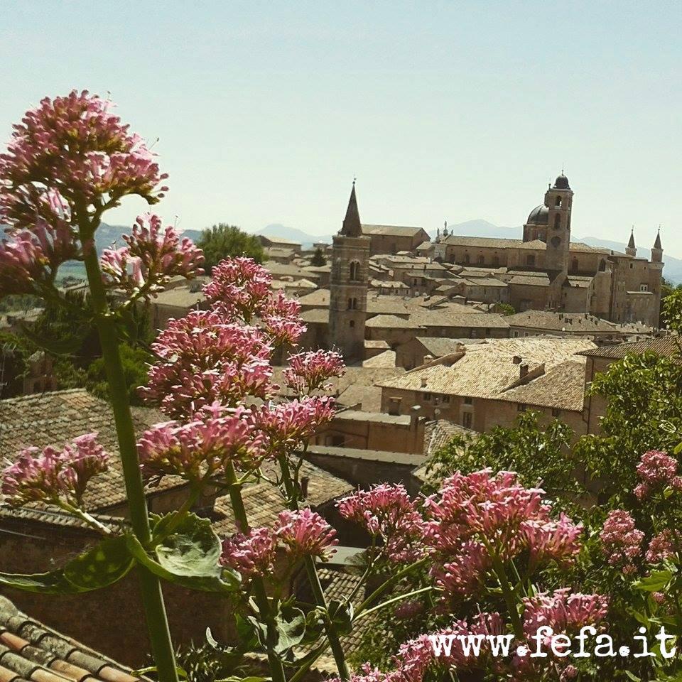 Vista panoramica su Urbino