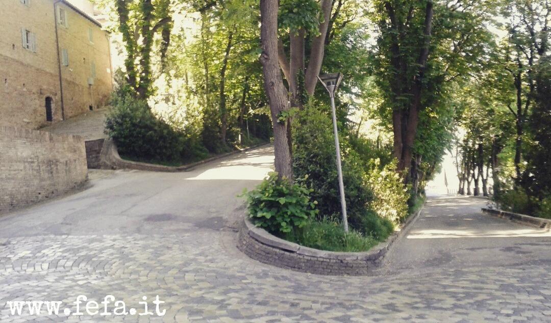 Un tratto della famosa Passeggiata Carlo Bo da cui si può ammirare il Palazzo Ducale- Urbino